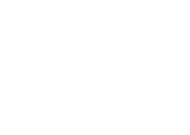 Levin Hoover Family Law Firm